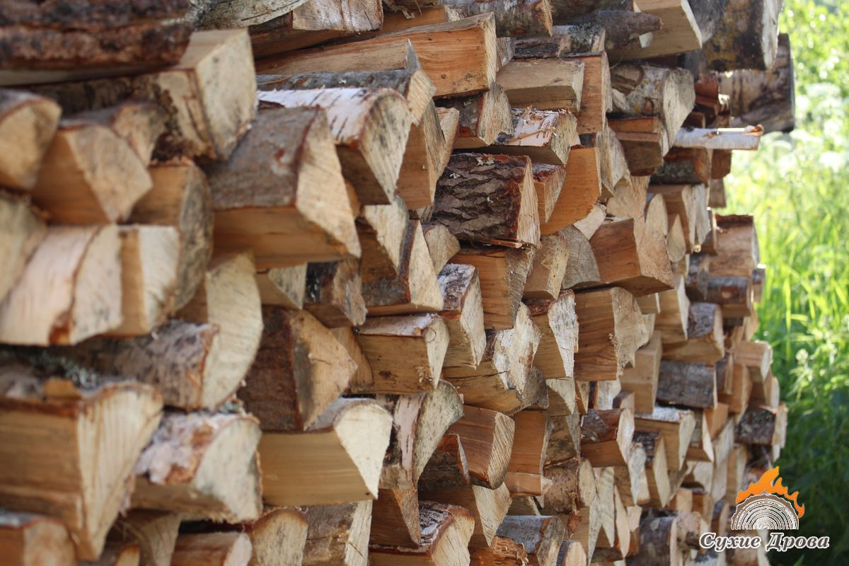 Лучше дрова для топки камина
