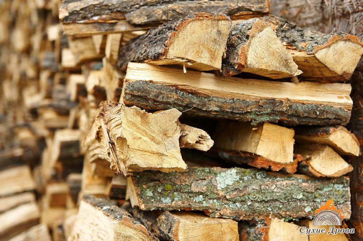 Топка сосновыми дровами