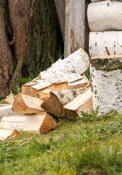 заготовка березовых дров на зиму